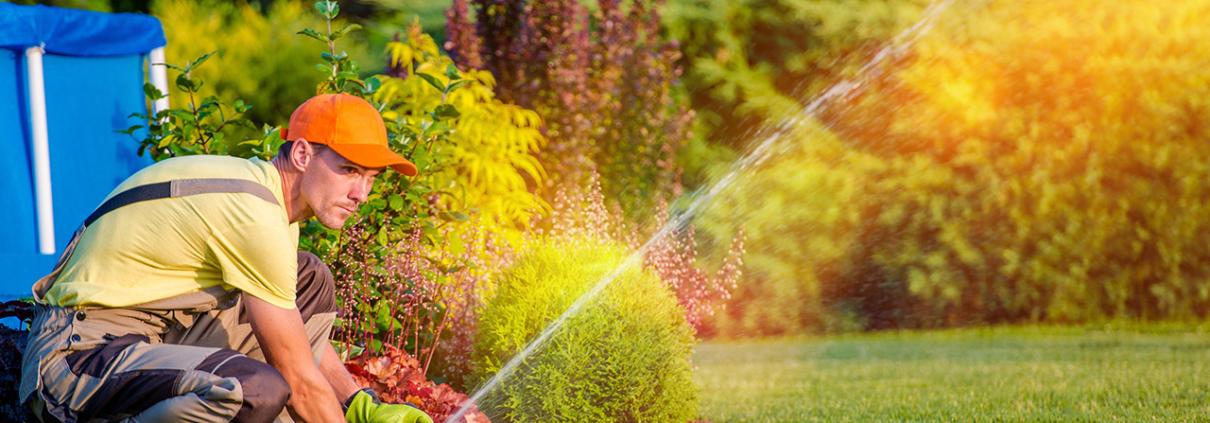 Sprinkler Heads Gilbert AZ